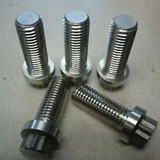 SS 12 point hex flange bolts